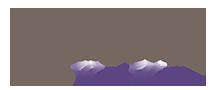 Brenda Hanson Realtor Logo